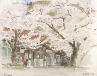 060429kokufu.st.sakura.jpg