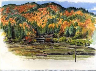 111110yoshida_autumncolour.jpg