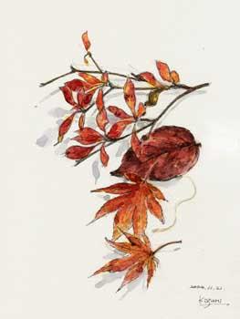 今年の秋色